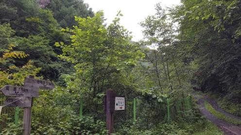 [8-1]평창청옥산농장 (입구-해발300m)